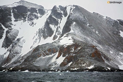 13112016_day 13_South Orkney Islands_6