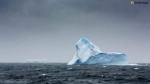 13112016_day 13_South Orkney Islands_9
