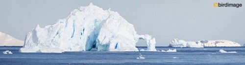 13112016_day 15_Antarctica_11