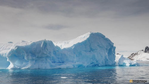 13112016_day 15_Antarctica_68
