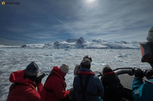 13112016_day 15_Antarctica_71