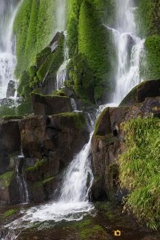 21112016_Iguazu day 2_11