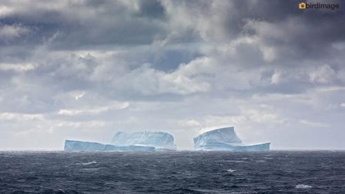 12112016_day 15_to Antarctica_15