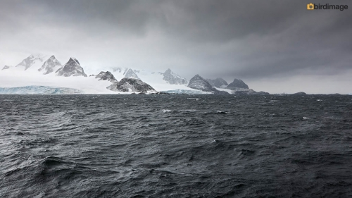 13112016_day 13_South Orkney Islands_11