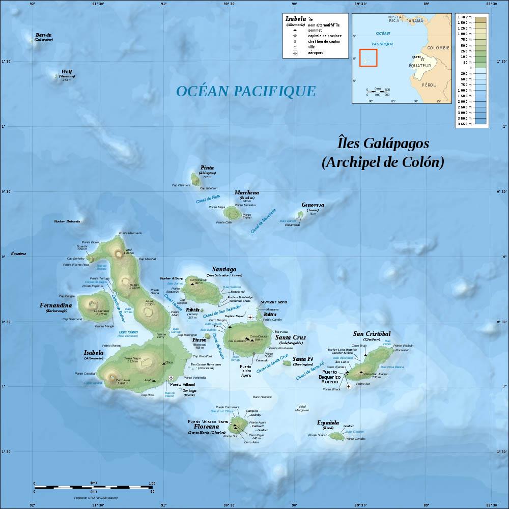 Galapagos 2007 in the foodsteps of charles darwin birdimage - Tafelhuis van het wereld lange eiland ...