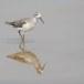 Poelruiter-Marsh-sandpiper-02