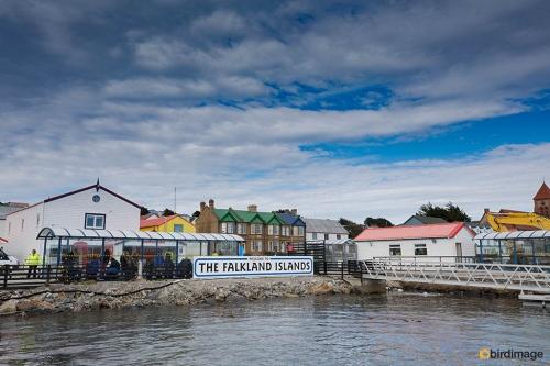 03112016_day 5_Falklands_Stanley 11