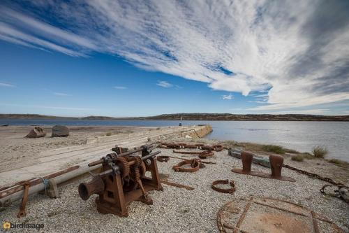 03112016_day 5_Falklands_Stanley_13