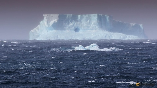 12112016_day 14_to Antarctica_5
