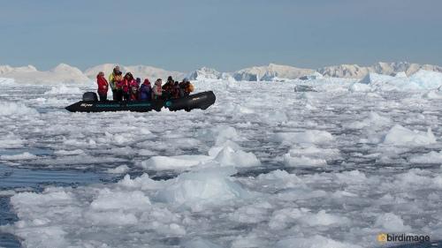 13112016_day 15_Antarctica_58