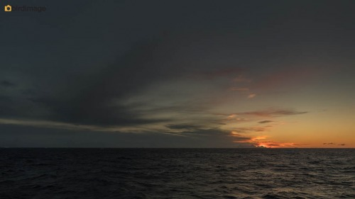 13112016_day 15_Antarctica_67