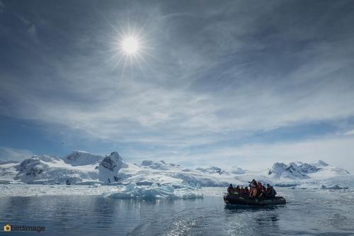 13112016_day 15_Antarctica_72