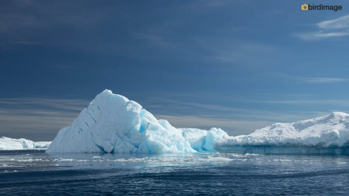 13112016_day 15_Antarctica_73