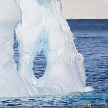 13112016_day 15_Antarctica_9