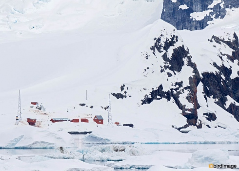14112016_day 16_Antarctica_37