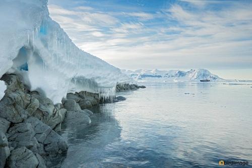 14112016_day 16_Antarctica_44
