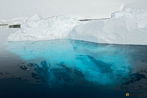 14112016_day 16_Antarctica_50