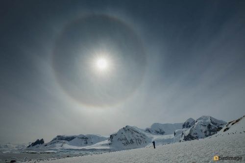 14112016_day 16_Antarctica_51