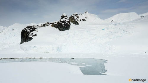 14112016_day 16_Antarctica_53