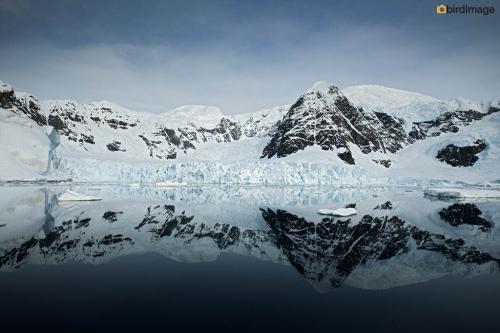 14112016_day 16_Antarctica_54