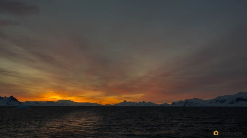 15112016_day 17_Antarctica_5