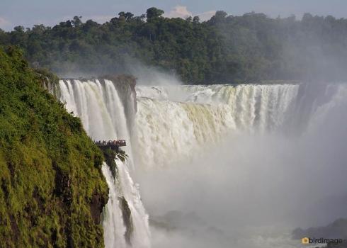21112016_Iguazu day 2_7