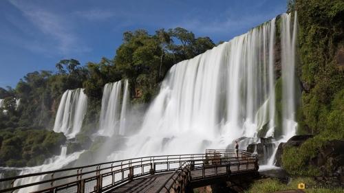 23112016_Iguazu day 4_2