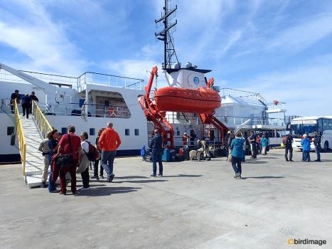 30102016 - day 7 Port Madrin 02