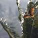 brahmaanse-wouw-brahminy-kite-01