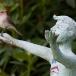 grauwe-vliegenvanger-spotted-flycatcher-05