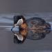 roodhalsfuut-red-necked-grebe-07